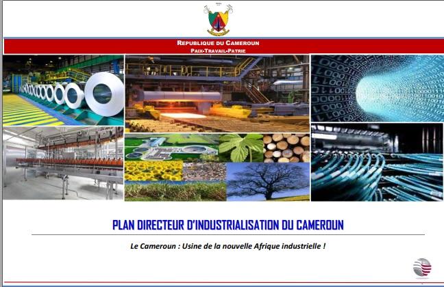 Plan Directeur d'Industrialisation