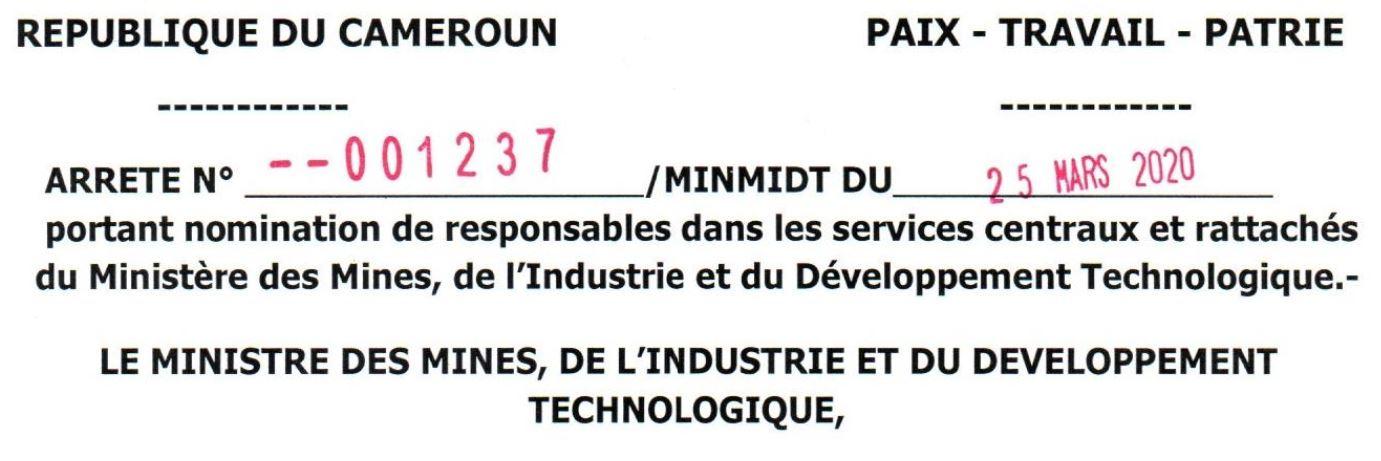 Arrêté N°001237/MINMIDT du 25 mars 2020 portant nominations dans les services rattachés